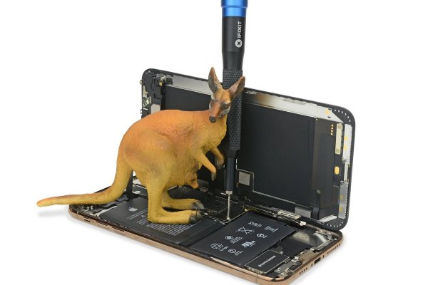 Opening the iPhone XS with the help of a kangaroo.