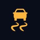 Electronic stability control symbol