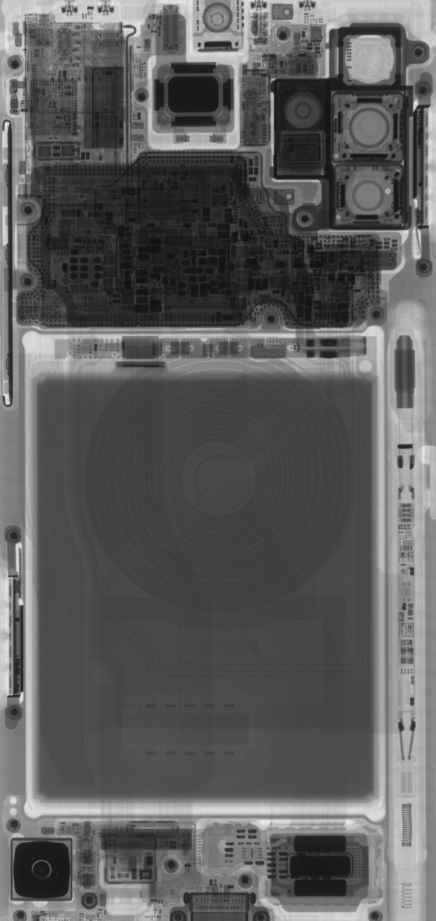 X-Ray image of the inside of the Samsung Galaxy Note10+ 5G phone.