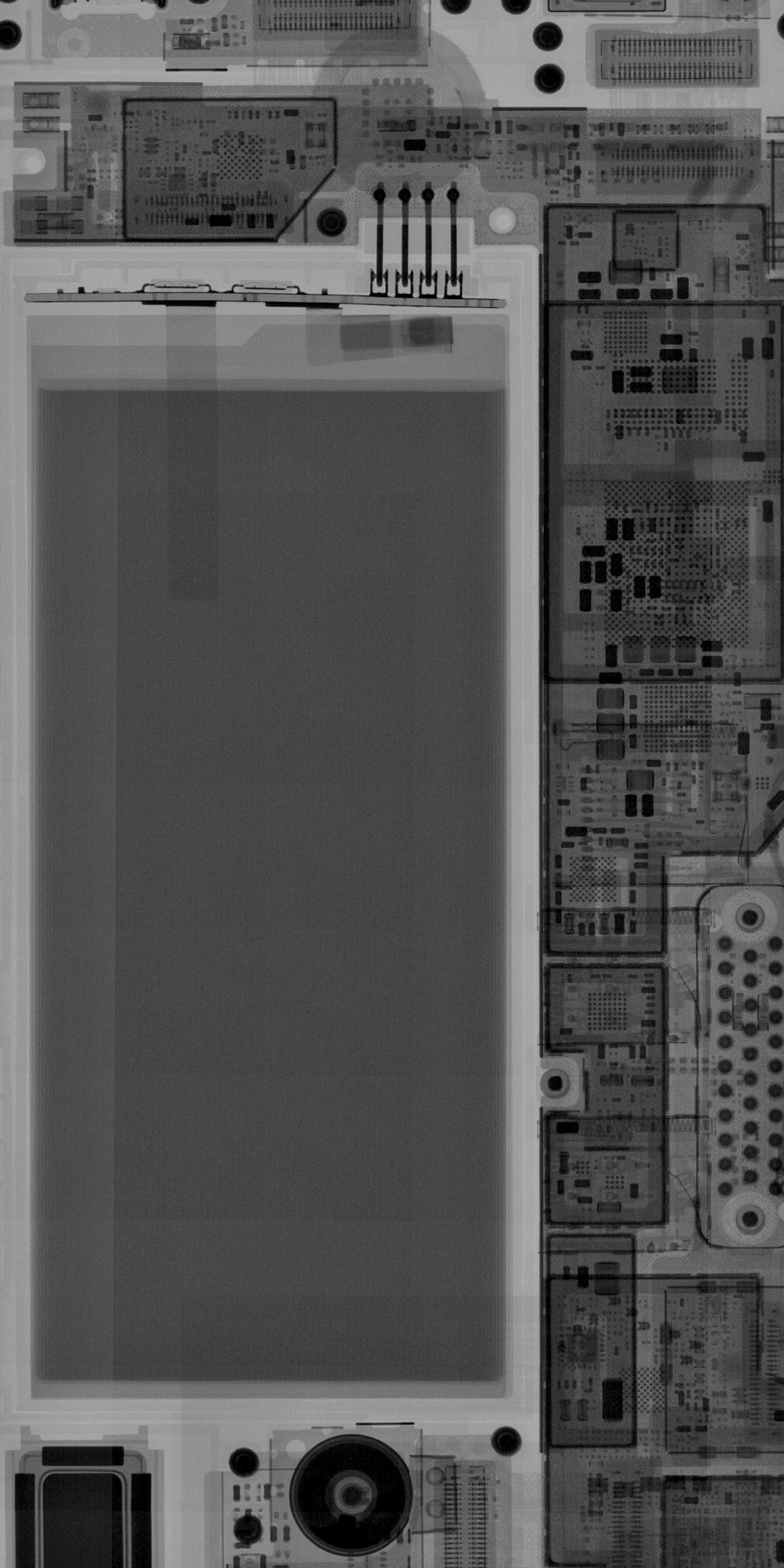Fairphone 3 X-ray wallpaper