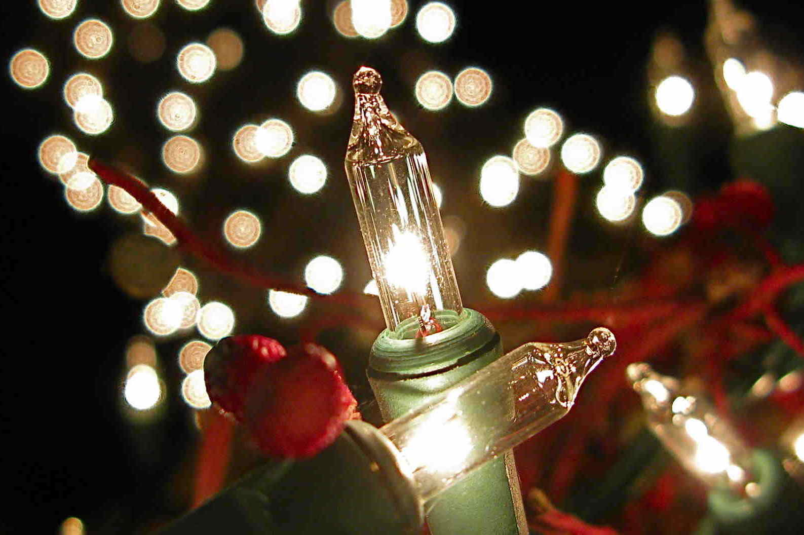 Best Raleigh Nc Christmas Light Hanging Service