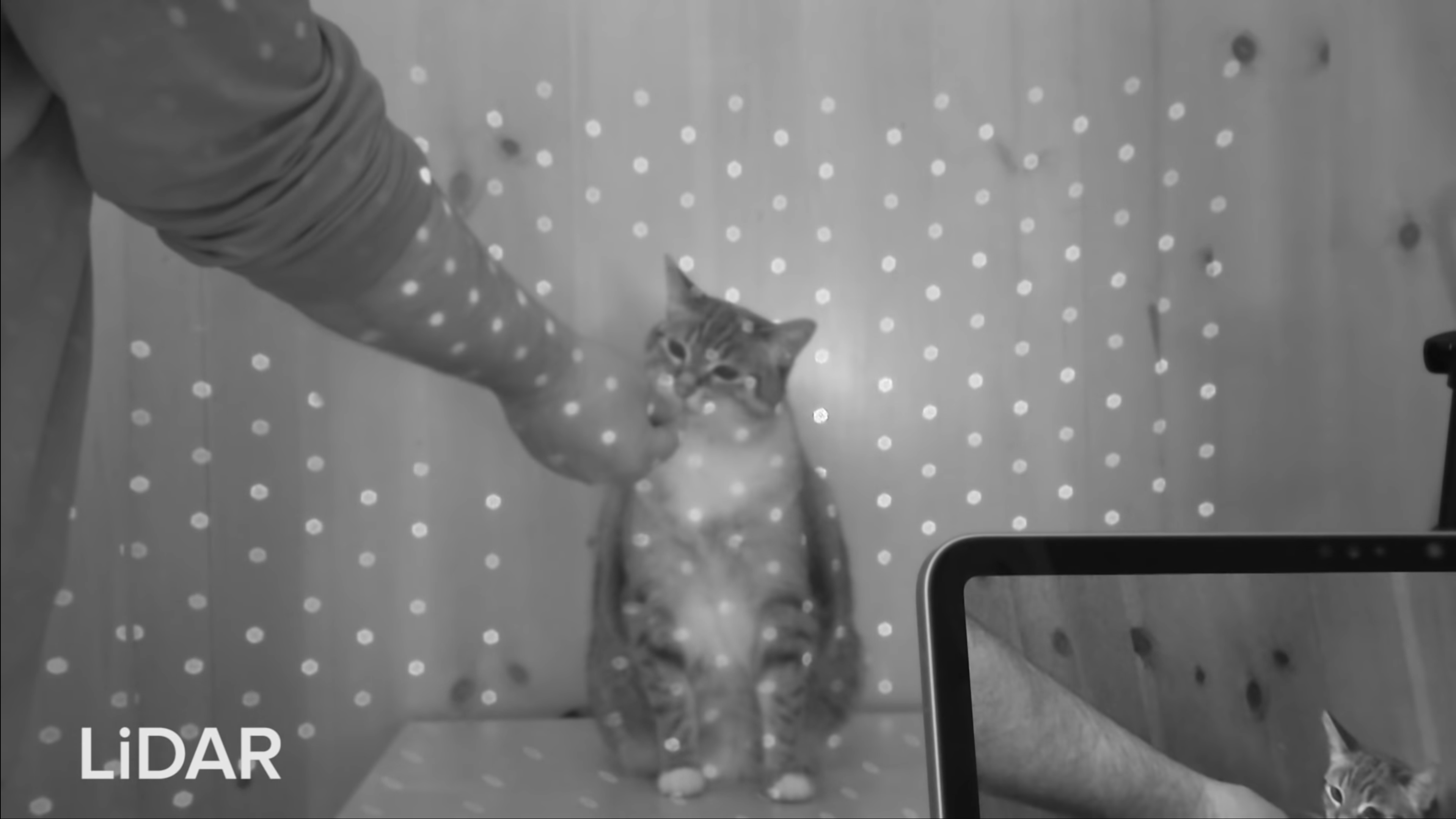 Still from video of a cat being scanned by LiDAR